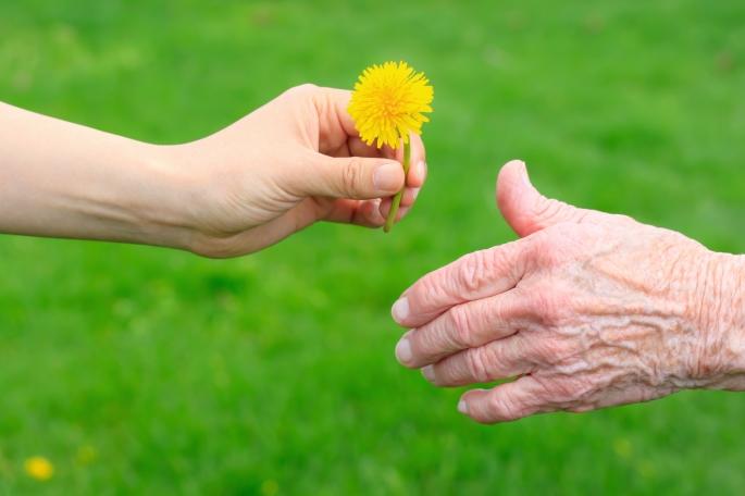 Giving a Dandelion to Senior