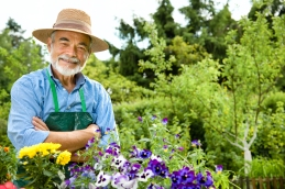 man-in-garden